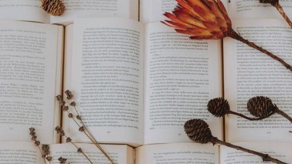 mes-das-mulheres:-15-livros-incriveis-com-personagens-femininas-fortes-que-todo-mundo-deveria-ler!