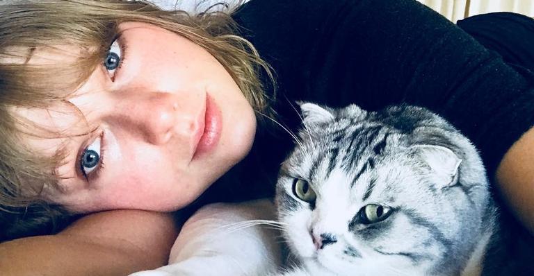 gatos-de-taylor-swift-estao-entre-pets-mais-procurados-em-2020;-vem-entender!