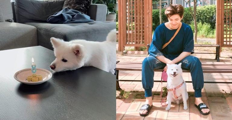 rm,-do-bts,-compartilha-fotos-do-aniversario-de-seu-cachorro-e-encanta-fas