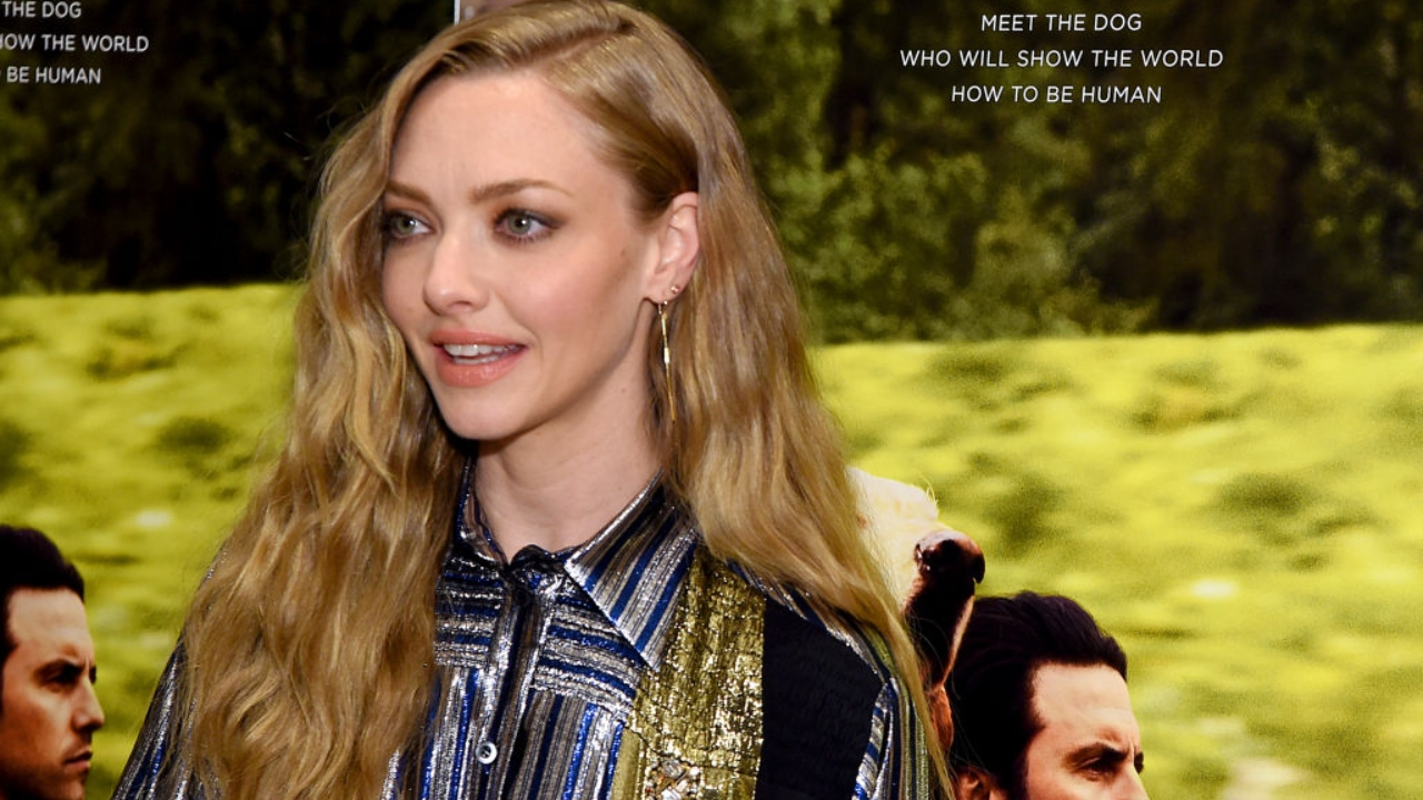 "Amanda Seyfried em evento de premiere de ""The Art Of Racing In The Rain"""