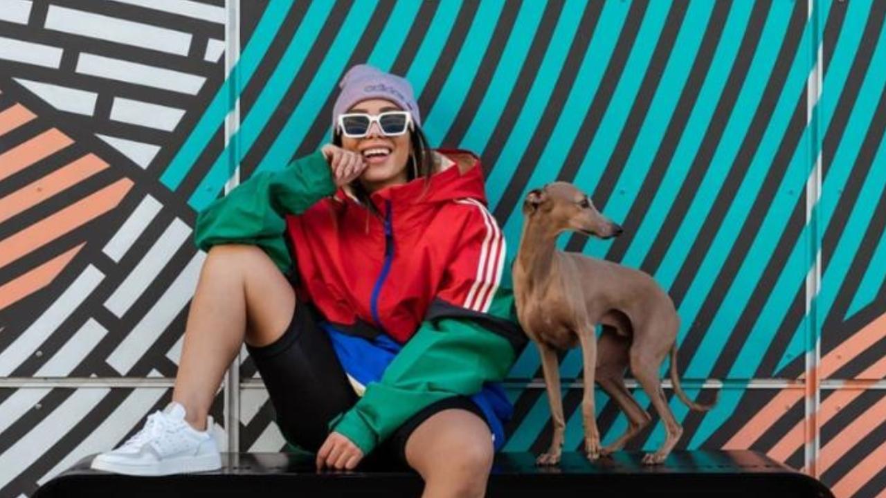 anitta registra reencontro com seu cachorro plinio e deixa web apaixonada